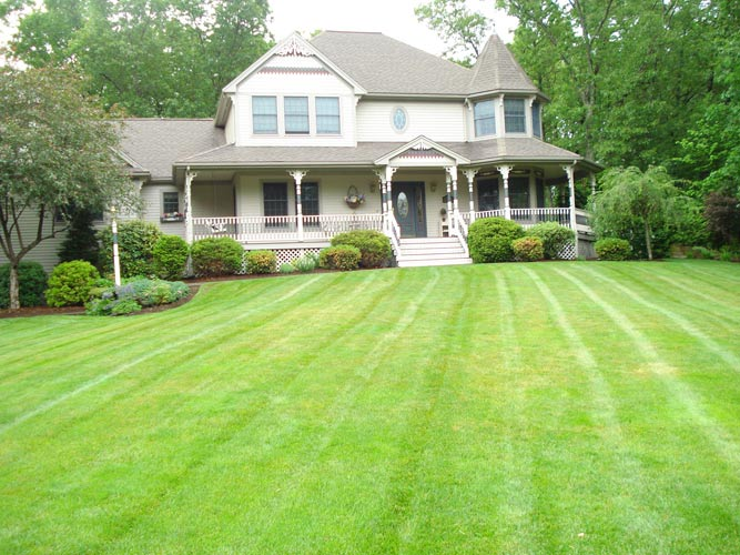 MRD Landscaping and Lawncare providing lawn maintenance